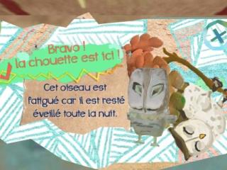 02_Jungle_histoire