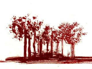 IM_PR_arbres_4