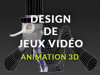 Design de Jeux Vidéo / Animation 3D'